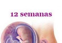 Grávida de 12 semanas - o 3º mês da gestação
