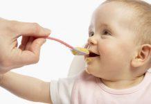 Ementa para-bebés com 12 meses
